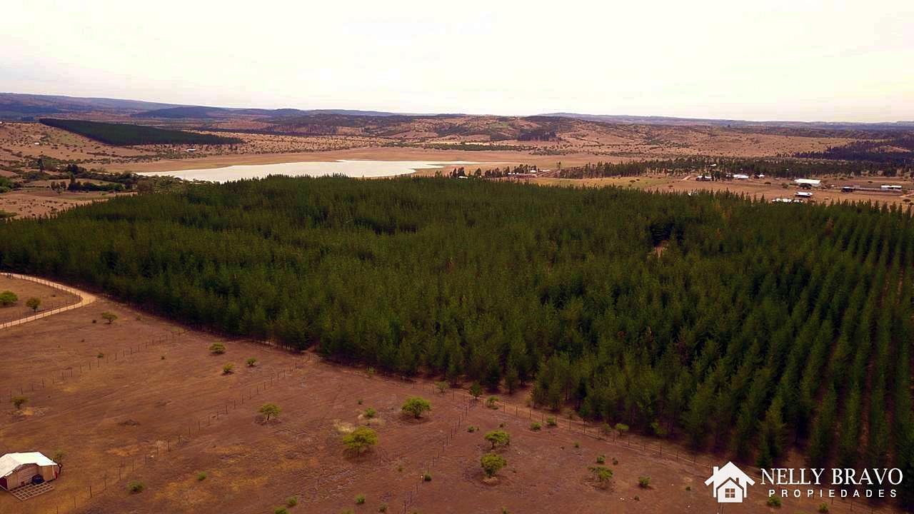 Se vende Terreno de 5.000 m2 en Mallermo, Marchigue